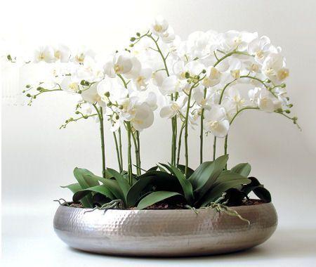 Http Orabolasdesign Com Br Blog Dicas Decoracao Flores