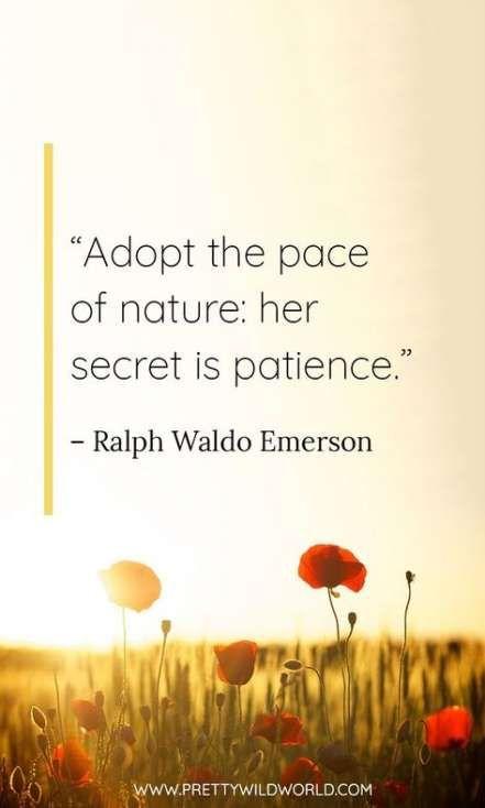 30 Ideas Nature Quotes Adventure Inspiration God quotes