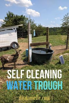 to Keep a Water Trough Clean for Livestock How to setup your water trough or stock tank so that it stays clear and clean. How to setup your water trough or stock tank so that it stays clear and clean. Raising Farm Animals, Raising Goats, Goat Farming, Livestock Farming, Livestock Water Tanks, Goat Shelter, Goat Pen, Goat House, Goat Care