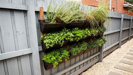 High Quality Hanging Herb Garden  Http://au.tv.yahoo.com/house Rules/galleries/photo/ /17743863/frontyard Vic Phase 3/17743878/  | Green Thumb | Pinterest | Hanging Herb ...