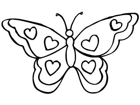 Afficher Cette Image De Butterflies Coloriage Papillon Papillon