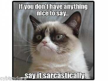 Trendy Funny Love Humor Teachers 55 Ideas Funny Grumpy Cat Memes Grumpy Cat Quotes Grumpy Cat Humor