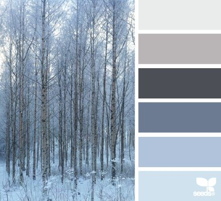 forest tones from Design Seeds.. we're adding grey to the rest of the house, so our current blues should work