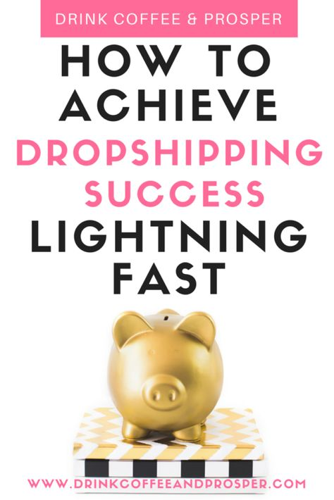 HOW TO ACHIEVE DROPSHIPPING SUCCESS LIGHTNING FAST ⋆ Quirky Cents