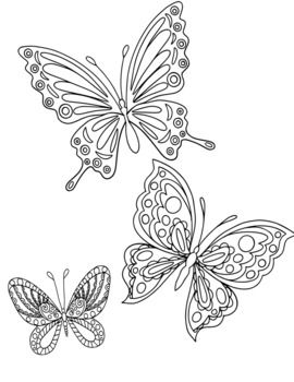 Butterfly Coloring Pages By The Creative Blessing Tpt Butterfly Coloring Page Coloring Pages Butterfly Drawing