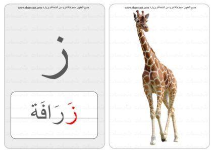 حرف منفصل كلمة صورة بطاقات الحروف والحيوانات 4 7 Animals Giraffe