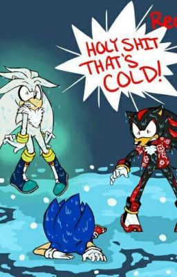 The S Bros Rp Sonic And Shadow Silver The Hedgehog Sonic Art