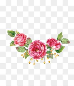 Flowers Png Flowers Transparent Clipart Free Download Marsala