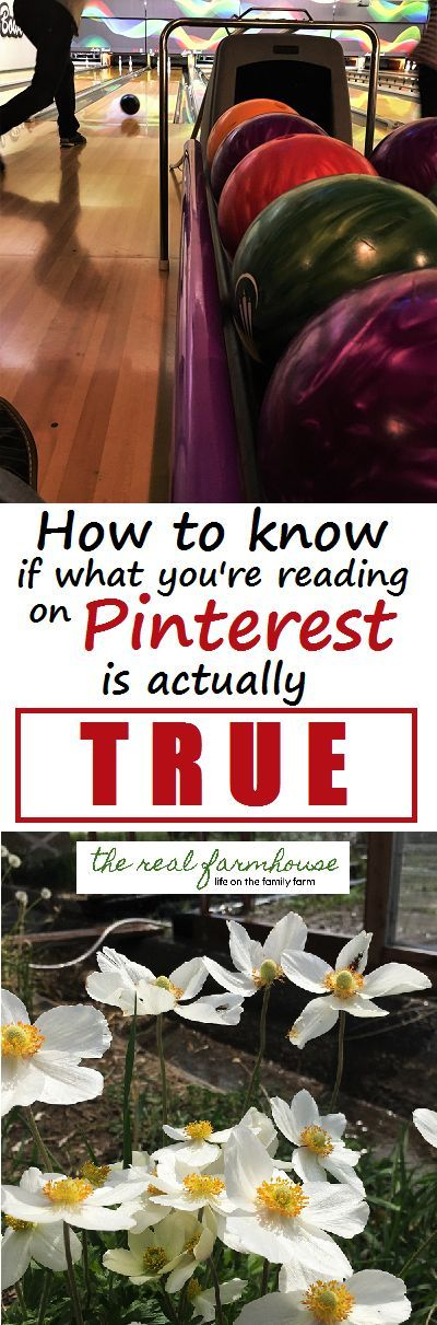 How to know if what your reading on Pinterest is actually true