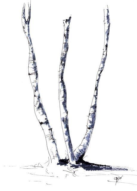Threesome, White Birch