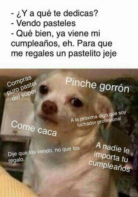 Pin De Maria Victoria Dopazo En Lol Memes Memes Divertidos Memes Nuevos