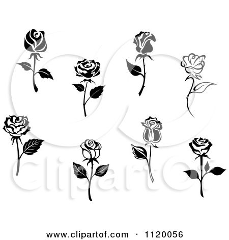 Clipart Of Black And White Rose Flowers Royalty Free Vector