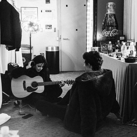 Camila Cabello + Shawn Mendes = Shawmila