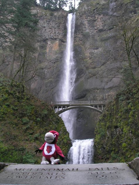 Rooney travels to Oregon