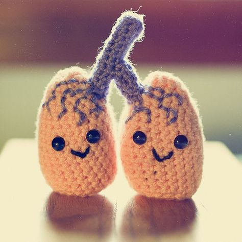 Free crochet amigurumi lungs pattern! Great gift for someone with lung cancer or having problems with lungs to brighten their day!