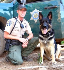 California Game Warden Park Ranger Working Dogs Animals And Pets