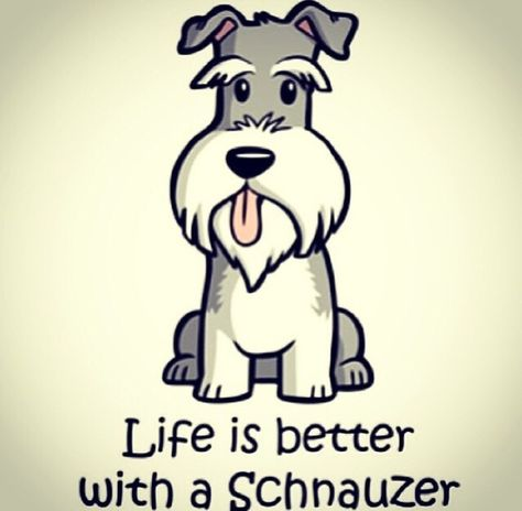 """Click visit site and Check out Cool """"Miniature Schnauzer"""" T-shirts. This website is superb. Tip: You can search """"your name"""" or """"your favorite shirts"""" at search bar on the top."""