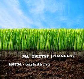 Israelites Bantous Hebreux Com Les Bantous Sont Les Anciens Juifs Hebreux Israelites De La Bible African History Facts African History History Facts