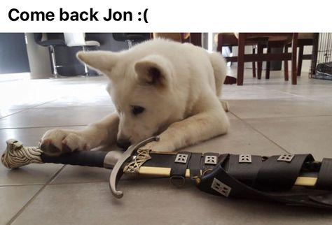 COME BACK!! #JonSnow #GameOfThrone
