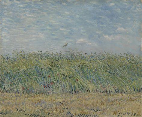 Wheatfield With Partridge 1887 Vincent Van Gogh Van Gogh Museum Amsterdam Vincent Van Gogh F Van Gogh Paintings Vincent Van Gogh Paintings Artist Van Gogh