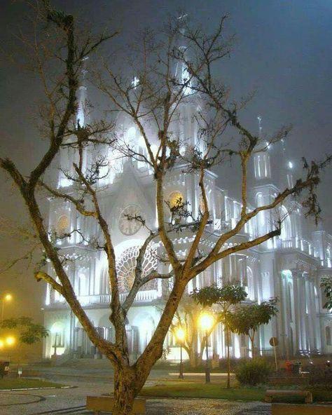 Uma bela imagem da igreja de Itajaí. Todos os elementos funcionaram muito bem a luz por trás da neblina envolvendo a igreja como em um sonho devaneio.  #olhardemahel #magrufloriano #matrizdeitajai #photo #image #fotografia #igrejamatriz #dream #aura #neblina #sonho #imagens #picture #pimagens #facebook #instgram #fotografia #itajai #church