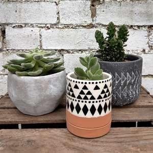 Burgon Ball Aztec Mini Plant Pot Trio Tray Set At Albert Moo Mini Plant Pots Aztec Decor Mini Plants