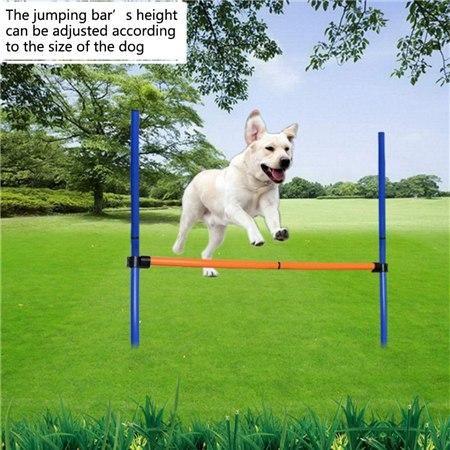 Dog Training Jump Bar Dog Training Outdoor Dog Agility Training