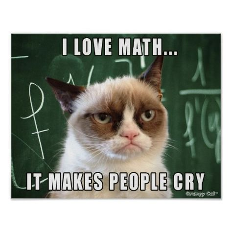 """Siamese Cats Applehead Grumpy Cat Poster- I love math it makes people cry - This was made by request for all the math teachers out there! Features the original Grumpy Cat photo over a chalk board with the caption """"I love math. It makes people cry. Grumpy Cat Quotes, Funny Grumpy Cat Memes, Funny Animal Jokes, Funny Animal Pictures, Animal Memes, Funny Cats, Funny Animals, Funny Memes, Hilarious"""