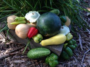 8 básicos del cultivo de vegetales en casa @enmicocinahoy @bclatino #huerta