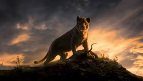 Alpha Movie 2018 Hd Wallpapers Nature In 2019 Movies