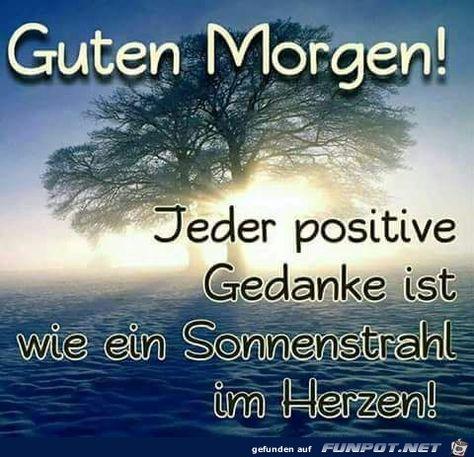 Liebe Guten Morgen Pinterest Hashtags Video And Accounts