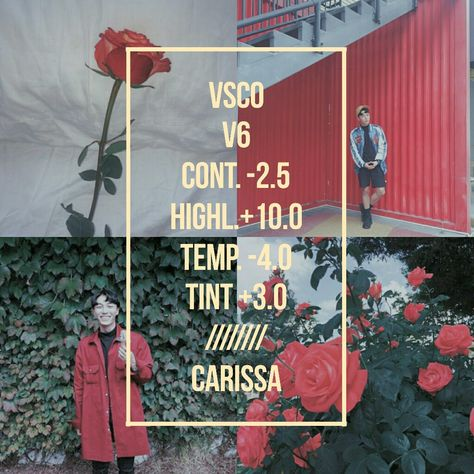 New Theme. Filter Guide/Filter Tips/V6Filter/VSCO