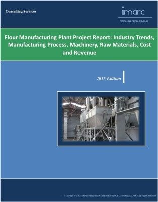 Rare Earth Magnet Manufacturing Plant Project Report Retail - project report