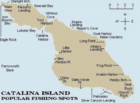 Catalina Island Map   Island map, maps, Island on avalon map, west cascades scenic byway, catalina kayaking, catalina zip line reservations, los angeles map, hells canyon scenic byway, catalina fishing, catalina trips from long beach, mount lemmon ski valley, long beach map, san diego map, logan canyon, curacao map, catalina landing long beach, isla isabela map, aruba map, mount nebo, santa catalina mountains, new mexico state highway 14, catalina ca, national scenic byway, state route 281, cascade lakes scenic byway, catalina tours, catalina foothills, huntington beach map, catalina harbor, hollywood map, mount lemmon, aspen fire, mount lemmon marathon, minnesota state highway 38, cherohala skyway, peppersauce cave, catalina chart, catalina express, palm springs map,