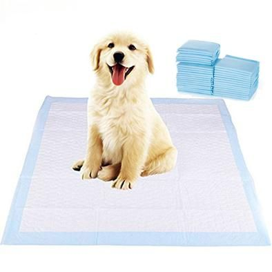 Dog Diapers Training Pads Antibacterial 4 Sizes Dog Diapers Puppy Pads Training Dog Training Pads