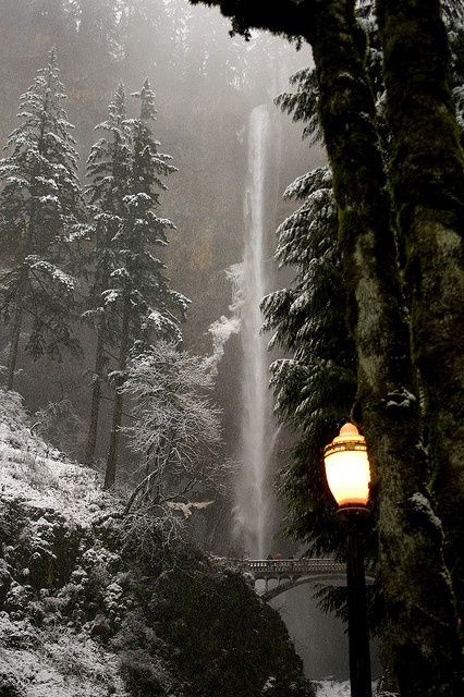 endorfins: Narnia (by Synapped) Dusky winter at Multnomah Falls in Oregon. This is the second-tallest year-round waterfall in the nation. Love the winter pic :) Multnomah Falls Oregon, Winter Szenen, Winter Night, Winter Trees, Les Cascades, Columbia River Gorge, Winter Beauty, To Infinity And Beyond, The Great Outdoors