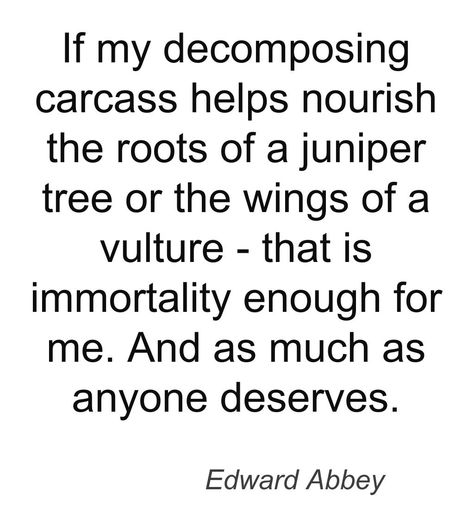 Top quotes by Edward Abbey-https://s-media-cache-ak0.pinimg.com/474x/ce/5a/c9/ce5ac92c7efe79d7d9b83f3dc4032430.jpg