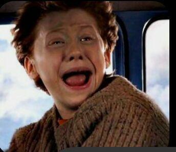 Ship it or Rip it  ~Harry Potter Ships~ - Geburtstag