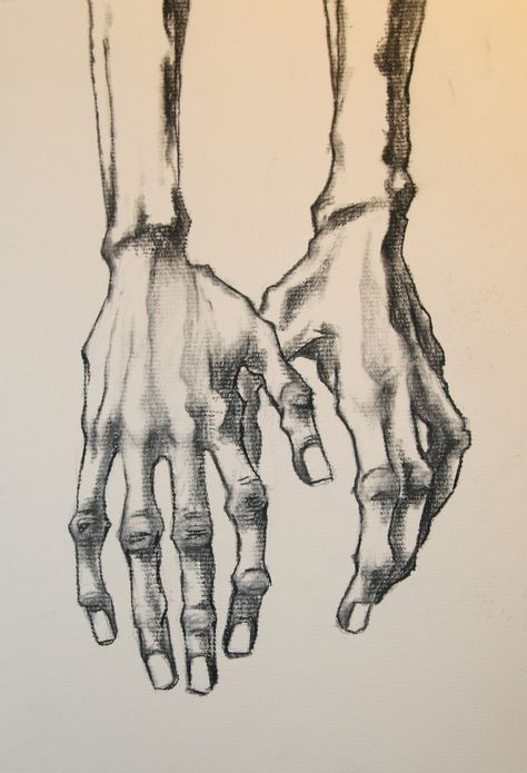 EGON HANDS by QuinteroART Idea to dray skeleton hands with fabric sleeves Life Drawing, Figure Drawing, Painting & Drawing, Matte Painting, Drawing Tips, Gustav Klimt, Dessins Egon Schiele, Egon Schiele Drawings, Art Sketches