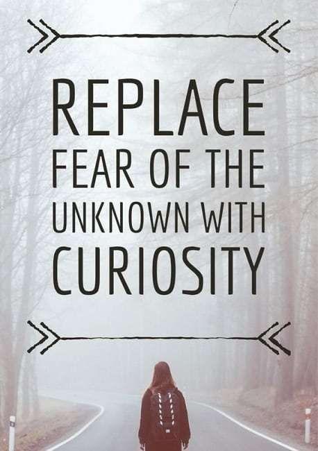 Best Curiosity Quotes Curiosity Quotes Unknown Quotes Curiosity