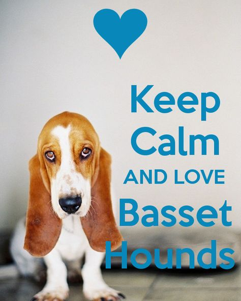 Keep Calm AND LOVE Basset Hounds - by JMK
