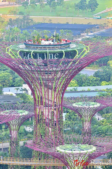 ce81428d8c300a3d7243161db4656d12  gardens by the bay scuba diving - Gardens By The Bay Design Concept