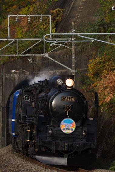夜汽車 蒸気機関車 sl みなかみ ホタル 鑑賞会 蒸気機関車 列車の旅 鉄道 写真