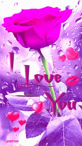I Love You love heart animated love quote gif i love you valentines day valentine's day red rose love greeting