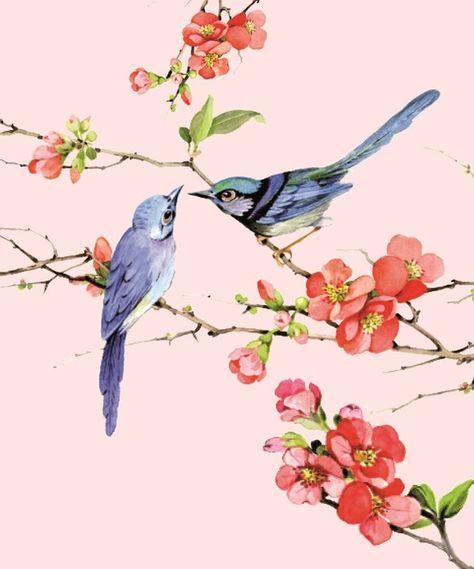 Chinese Bird Painting Flower 47 Ideas Flower Painting Birds Painting Painting