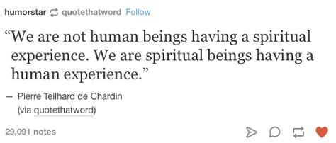 Top quotes by Pierre Teilhard de Chardin-https://s-media-cache-ak0.pinimg.com/474x/ce/b1/99/ceb199bbab33d68c29991b7c77eb3300.jpg