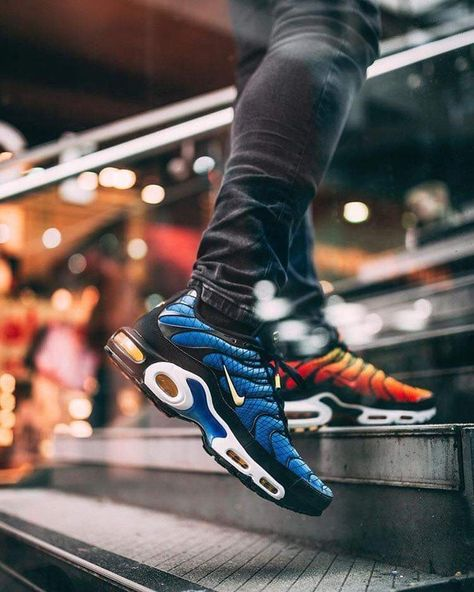 Details about Nike Air Max Plus OG Tn GREEDY Blue Shark x Sunset Tiger UK 7 11 EUR 41 46