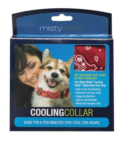 Misty Mate Cooling Collar Assorted Colors In 2020 Dog Collars