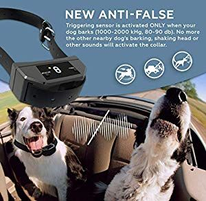 Waterproof Anti Bark Dog Training Smart Collar Shock With Anti False Function By Elzu Us Dogs Pets Pet Dogs