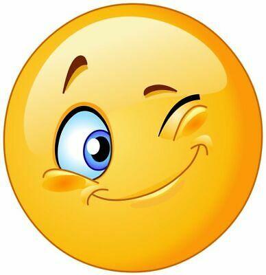 Young Smile Wink Emoji Vinyl Decal Sticker Multiple Sizes To Choose From Winking Emoji Smiley Emoji Smiley